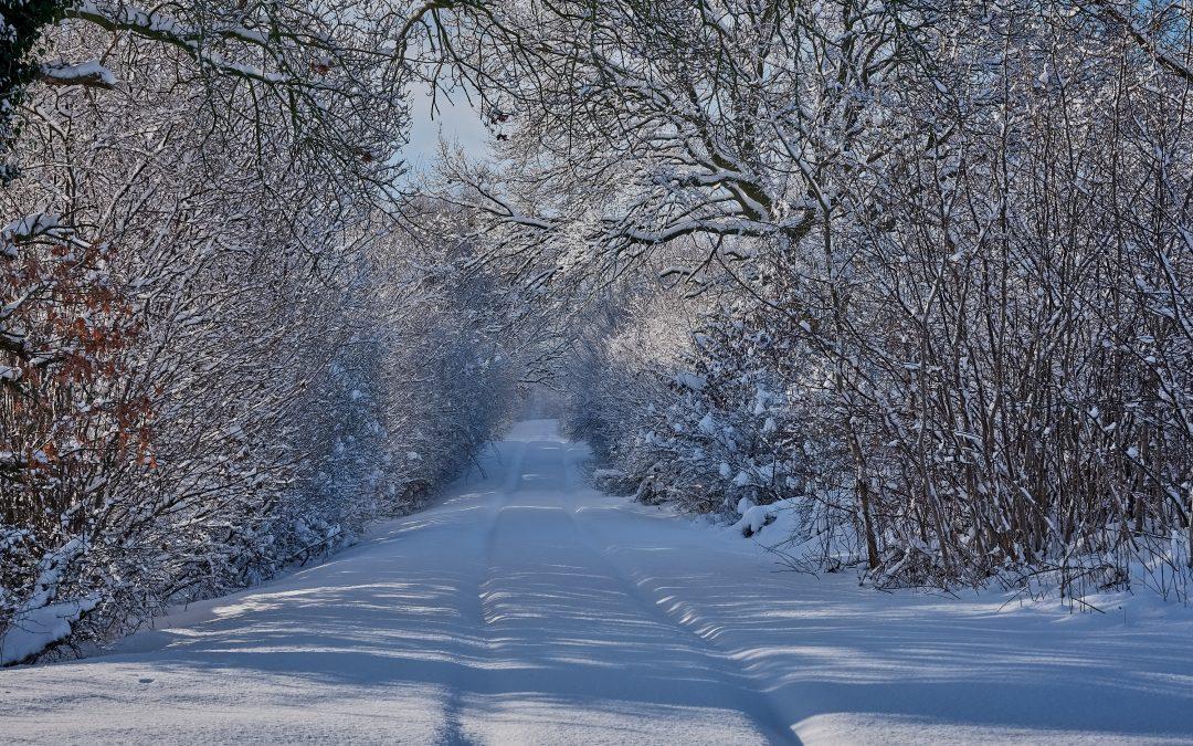 Winterimpressionen in Schleswig-Holstein